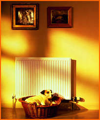 solid-fuel-central-heating